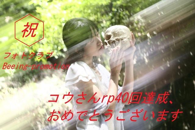 _MG_0073a.jpg